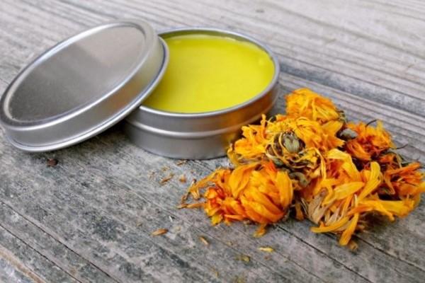 healing calendula salve recipe