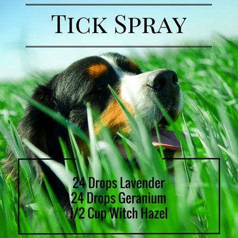 Tick Spray Recipe 1