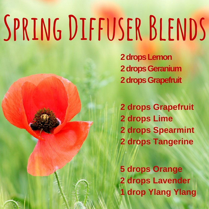 Spring Diffuser Blends Recipe